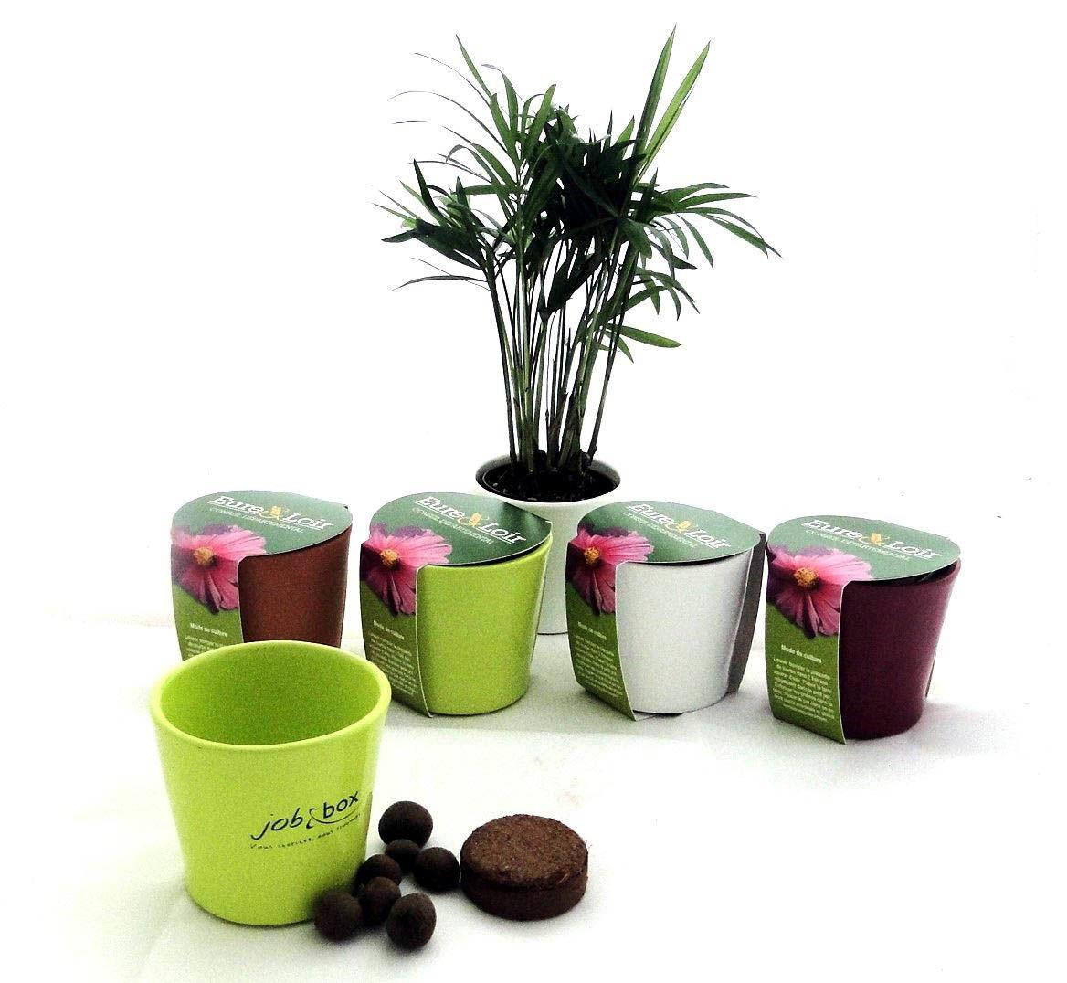 kit de plantation ceramique pour entreprise outils de jardinage publicitaires kelcom. Black Bedroom Furniture Sets. Home Design Ideas