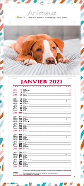 calendrier bloc animal