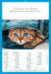 calendriers chats et chiens