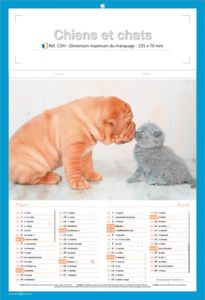calendriers chats et chiens 1