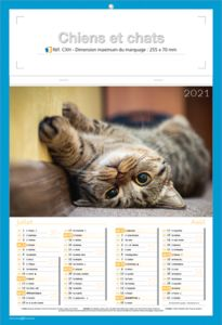 calendriers chats et chiens 3