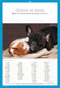 calendriers chats et chiens 4